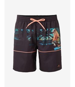 boardshortky-o-neill-pm-archive-shorts-barevna.jpg